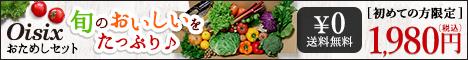 送料無料!お試しセット 無農薬野菜、無添加食品の宅配