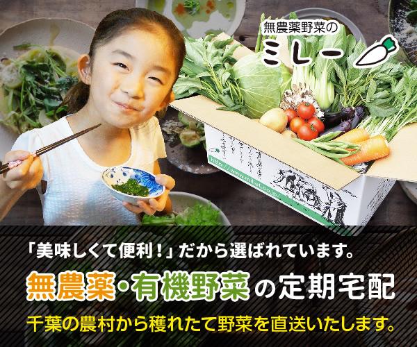 無農薬野菜ミレー【定期購入】季節の野菜と果物盛りだくさんセット