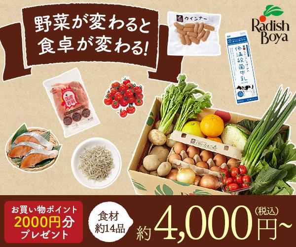 食材・日用品宅配 おまかせ野菜7種(2~3人用)金額約5,500円