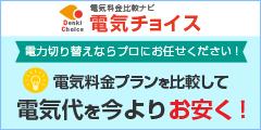 当サイト限定最大30000円現金キャッシュバック!【電気チョイス】