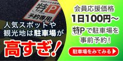 特P(新規登録+利用)